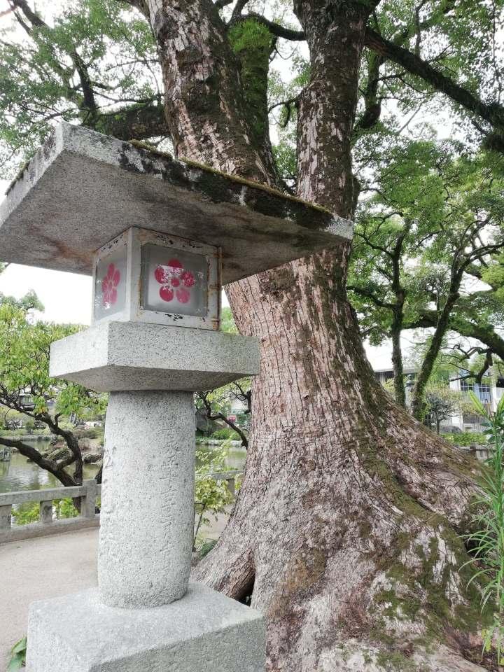Ohori to Dazaifu: Seeing the Sights inFukuoka