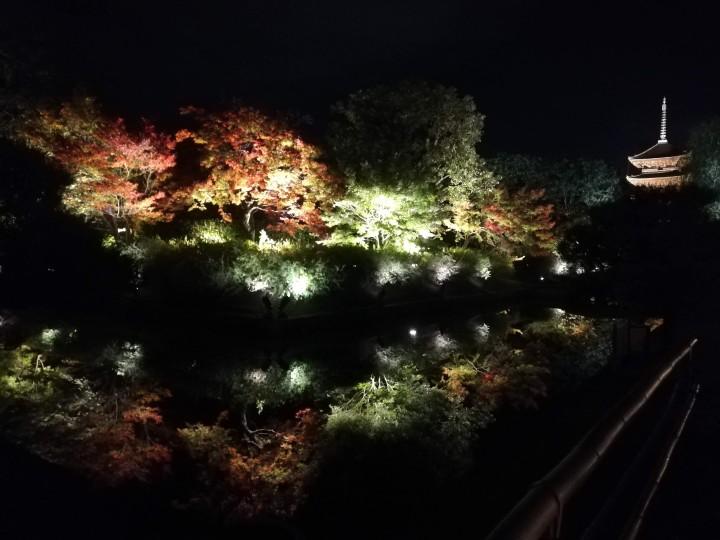 The Light of my Life: Toji Temple,Kyoto